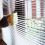 Tips & Tricks On How To Clean Venetian Blinds
