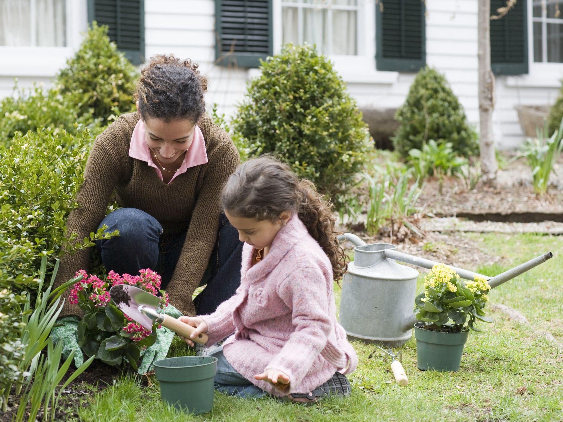 Plant Nursery Long Island